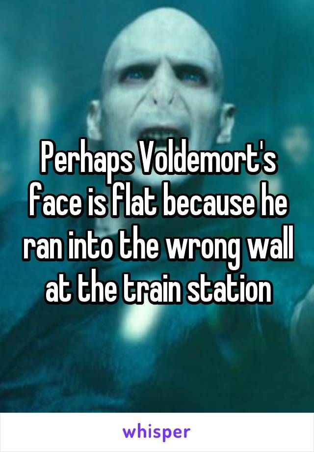 Perhaps Voldemort S Face Is Flat Because He Ran Into The Wrong Wall At The Train Station Harry Potter Jokes Harry Potter Funny Harry Potter Puns