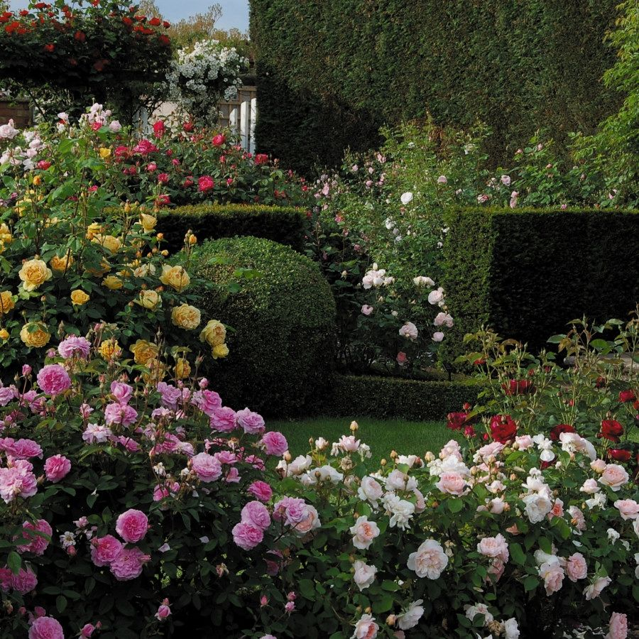 Home garden design flower  Beautiful DIY Cottage Designs You Can Create To Add Beauty To Your