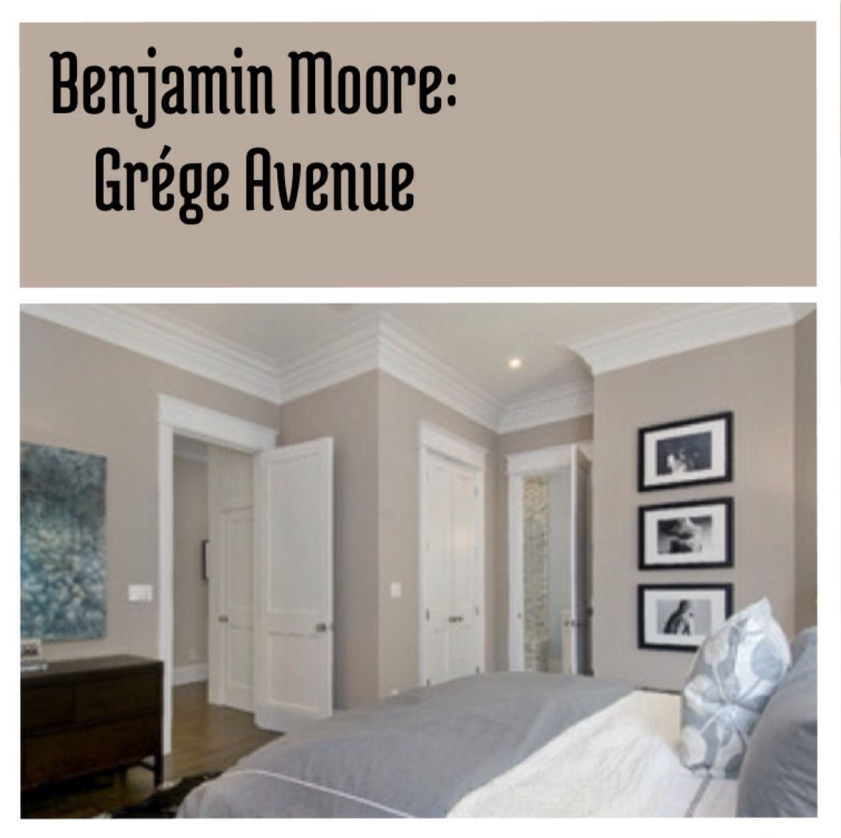 Benjamin moore grége avenue beautiful neutral wall color to paint