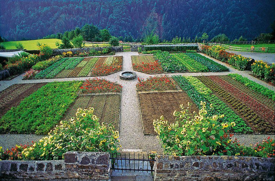 Klostergarten Garten Botanischer Garten Pflanzen