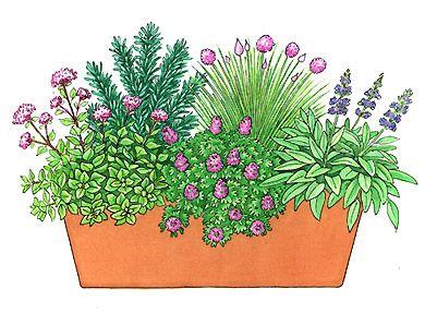 Luxury Helga Meyer Illustration zum Thema Garten