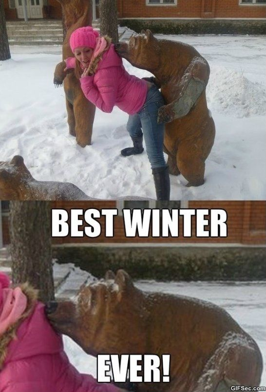 669b21b2dc71e3895566d6e34074232d best winter ever meme meme collection pinterest winter meme