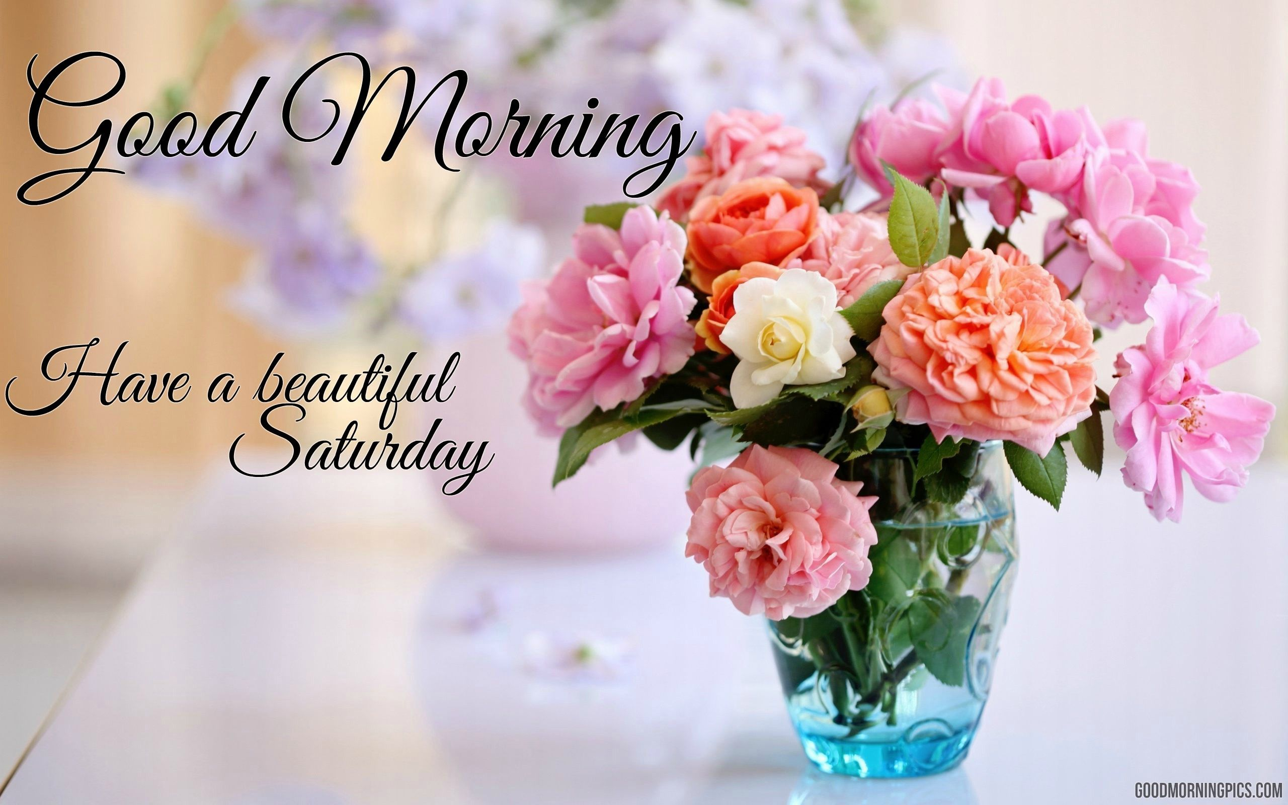 Top good morning images with beautiful flowers and quotes 669b77c1aaf1dc075f44ddf e90e izmirmasajfo