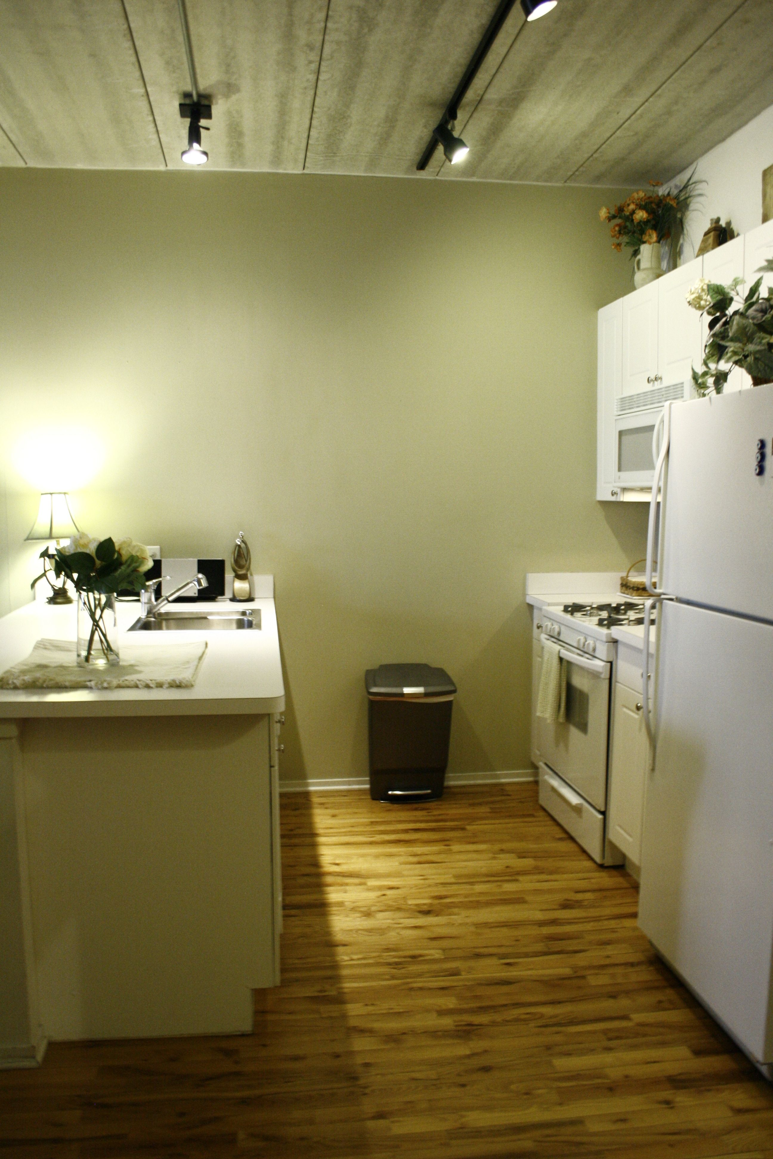 trendy galley kitchen