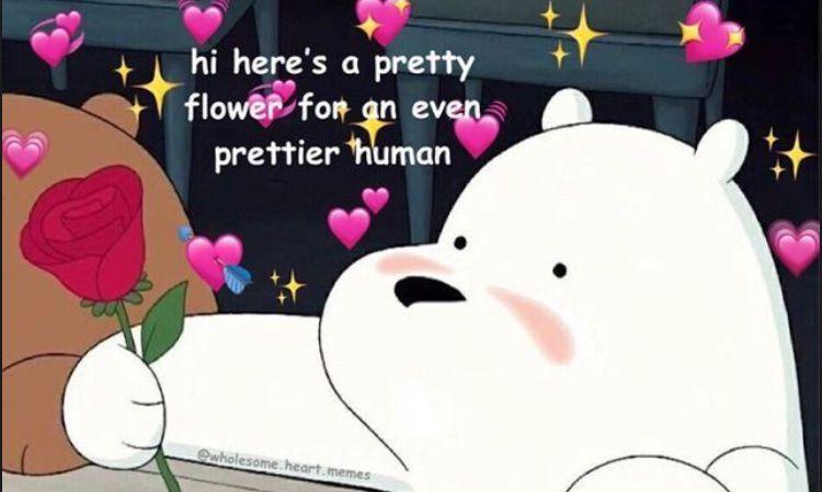 Profile Aesthetics Super Funny Memes Cute Love Memes Cute Memes