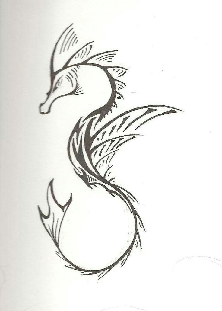 Sea Dragon Tattoo Idea Seahorse Tattoo Dragon Tattoo Silhouette Tattoos