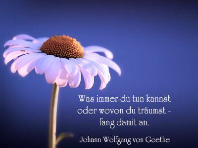 Goethe geburtstag gedicht