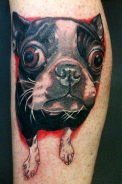 Tattoos of boston terriers