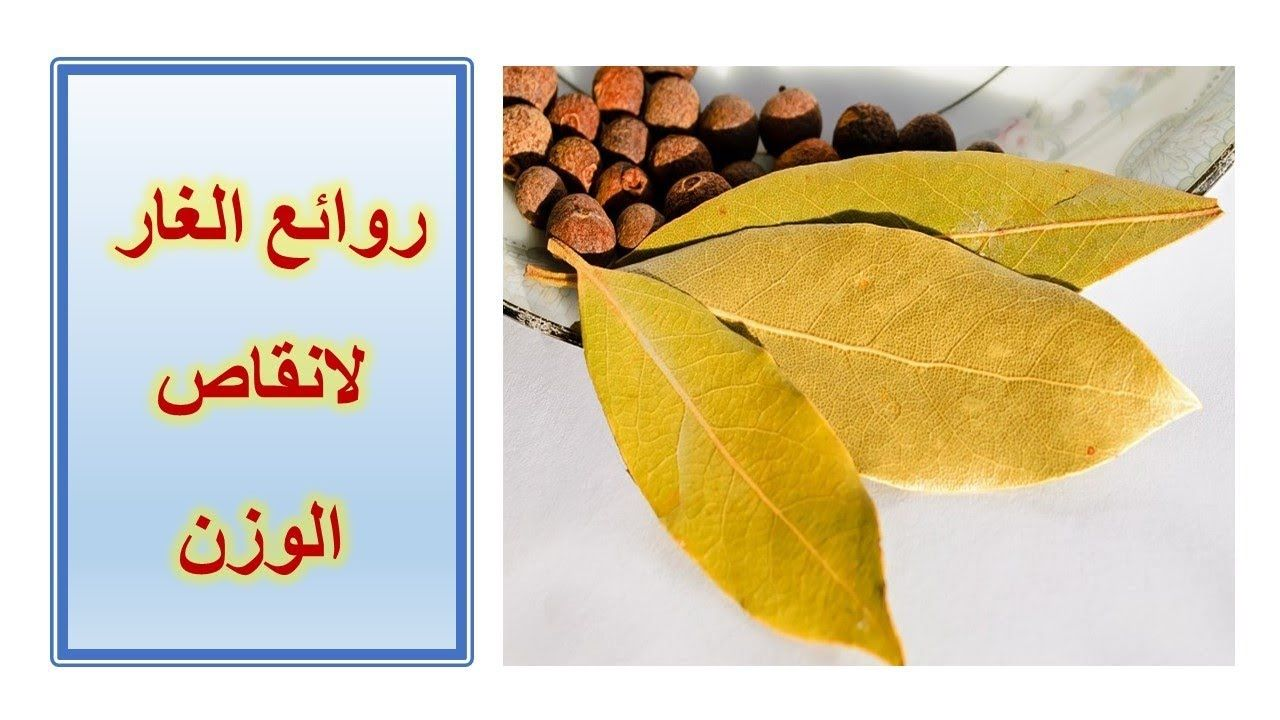 فوائد اوراق الغار جزء 4 لانقاص الوزن Benefits Of Bay Leaves Pt Plant Leaves Healthy Recipes Remedies