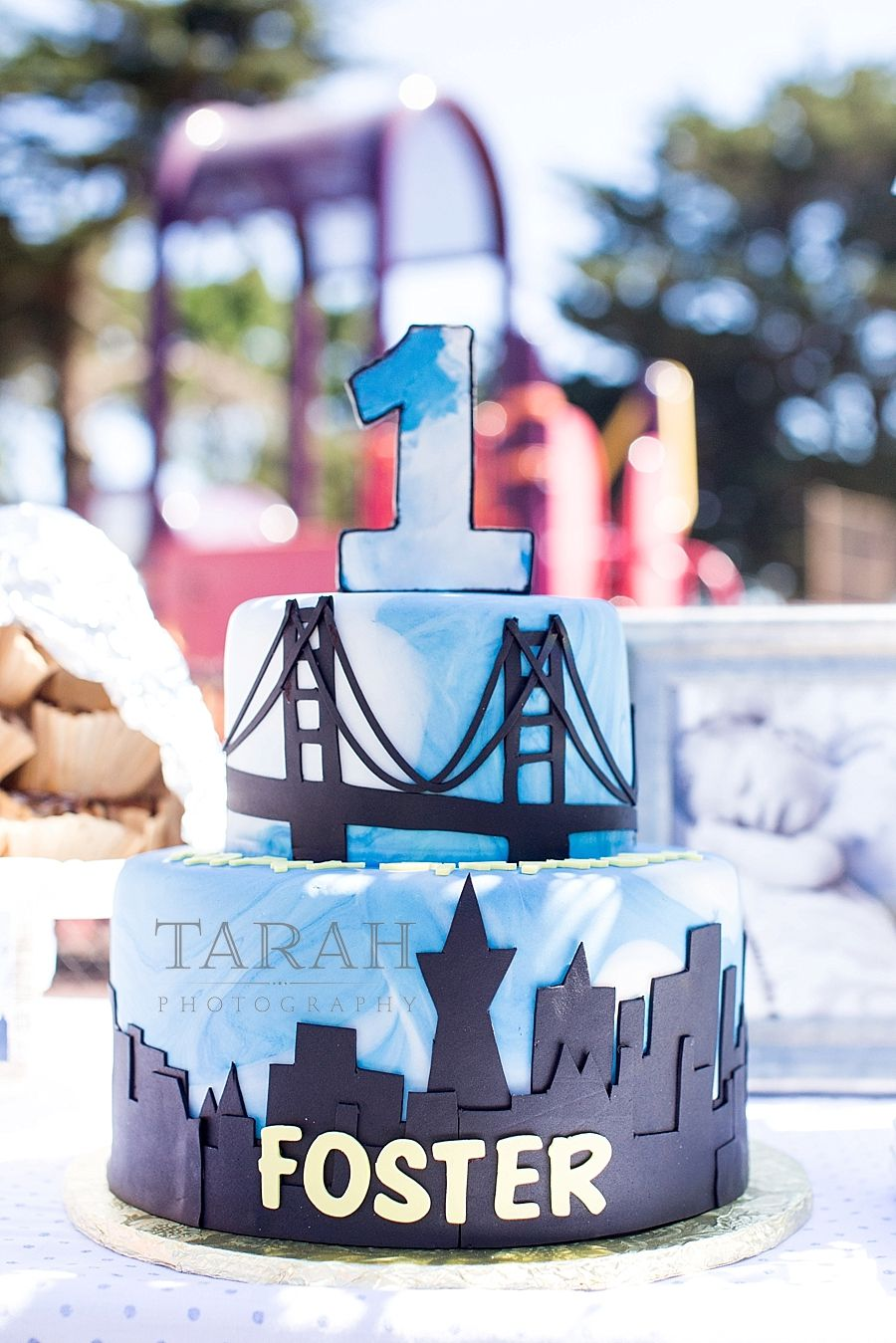 San Francisco Picnic By The Bay First Birthday And Cake Smash For Baby Boy