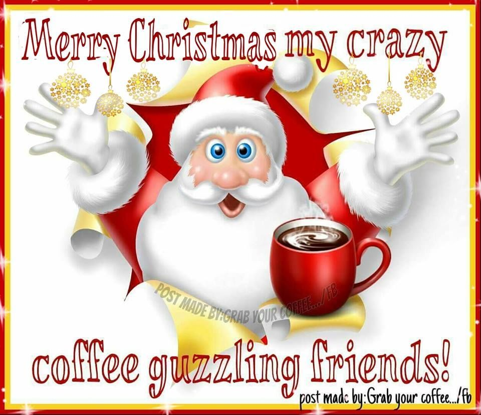 Merry Christmas My Crazy Coffee Guzzling Friends Christmas Merry Christmas Christmas Quotes Merry Christmas Quotes Merry Christmas Eve Quotes Christmas Quotes