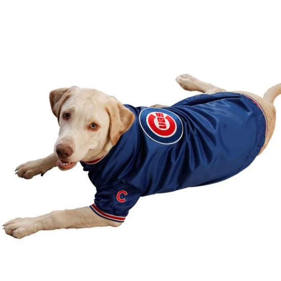 Chicago Cubs Dugout Dog Jacket By Pets First Sportsworldchicago