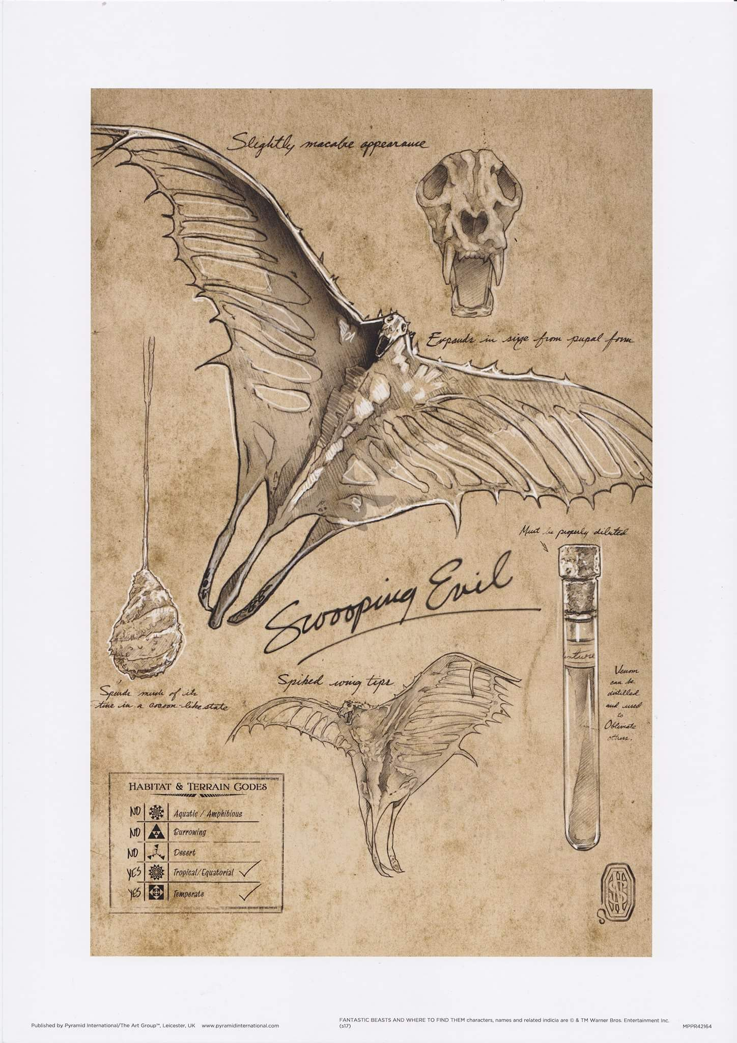 Mal Acechador Harry Potter Creatures Fantastic Beasts Creatures Fantastic Beasts