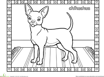 Chihuahua Dog Coloring Page Education Com Coloring Pages Cat Coloring Book Dog Coloring Page