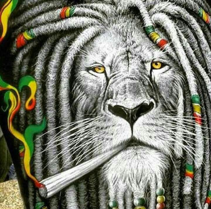 Rastafarian 2: Rasta Lion, Lions