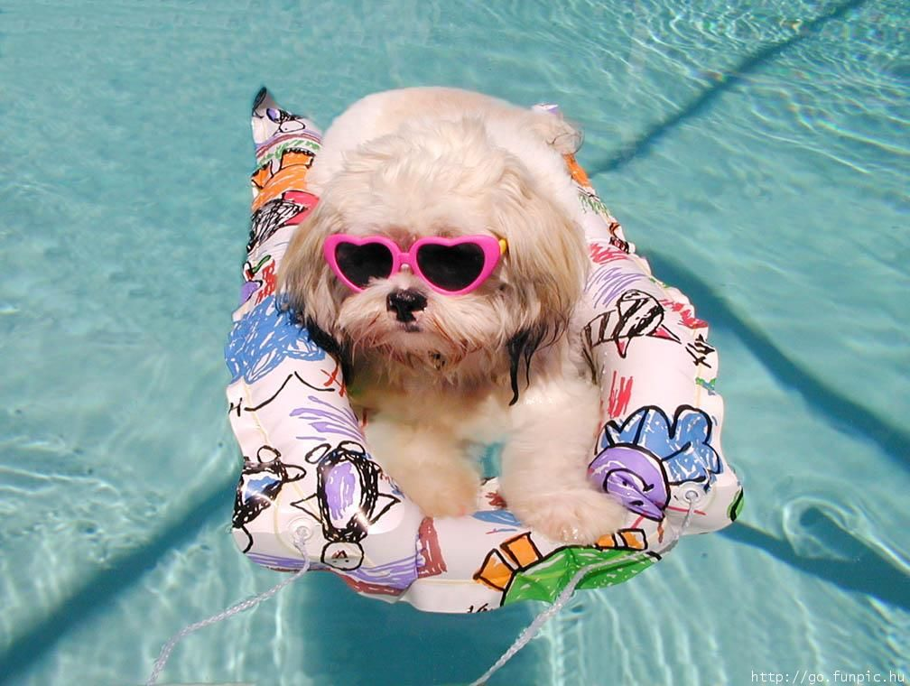 13 Things To Do This Summer If You Don T Have An Internship Cute
