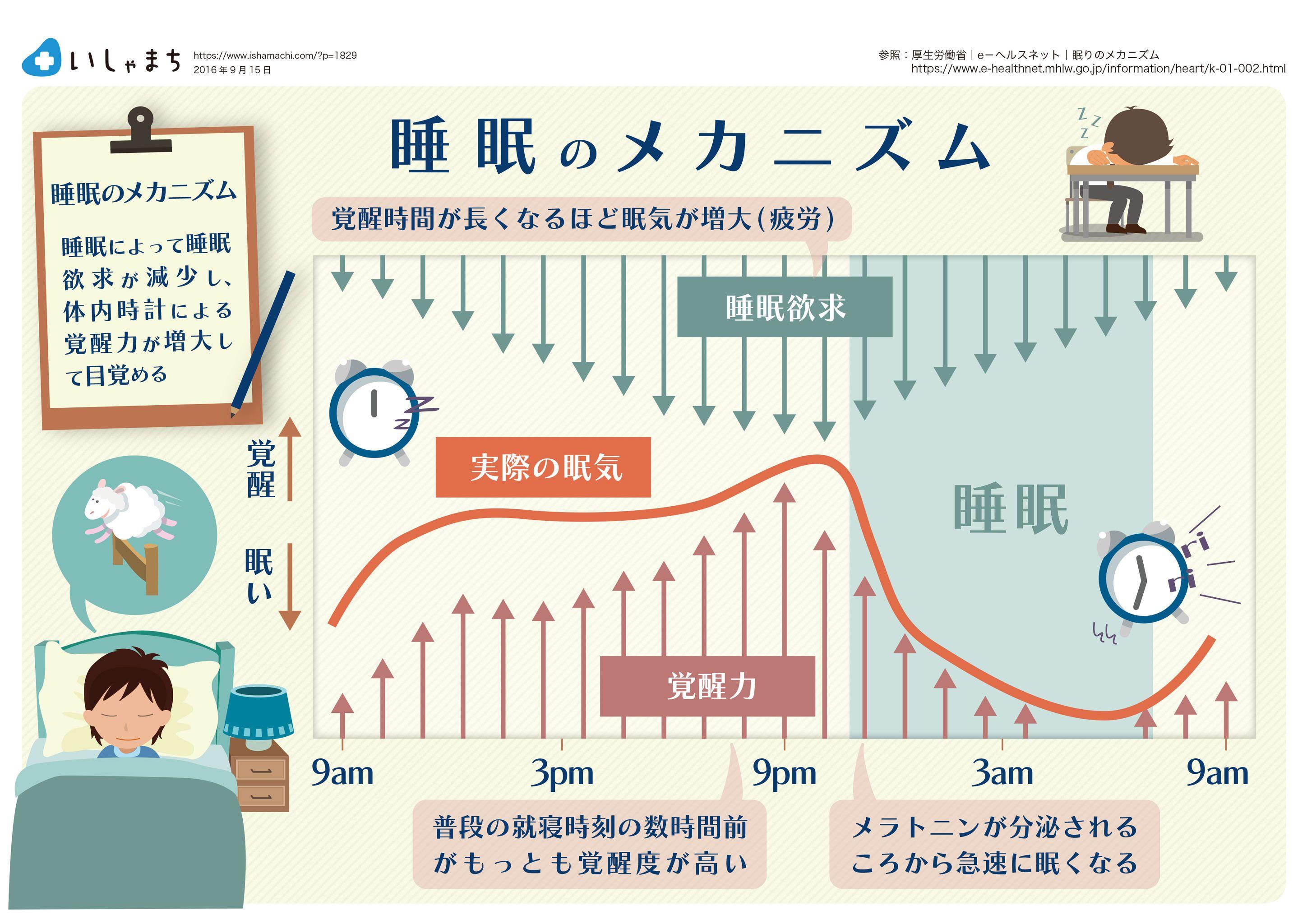 睡眠のメカニズム Infographics ストレス対策 生理学 健康