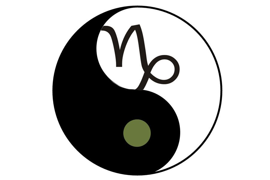 The Logo I Decided Upon In The End Yin And Yang With The Capricorn