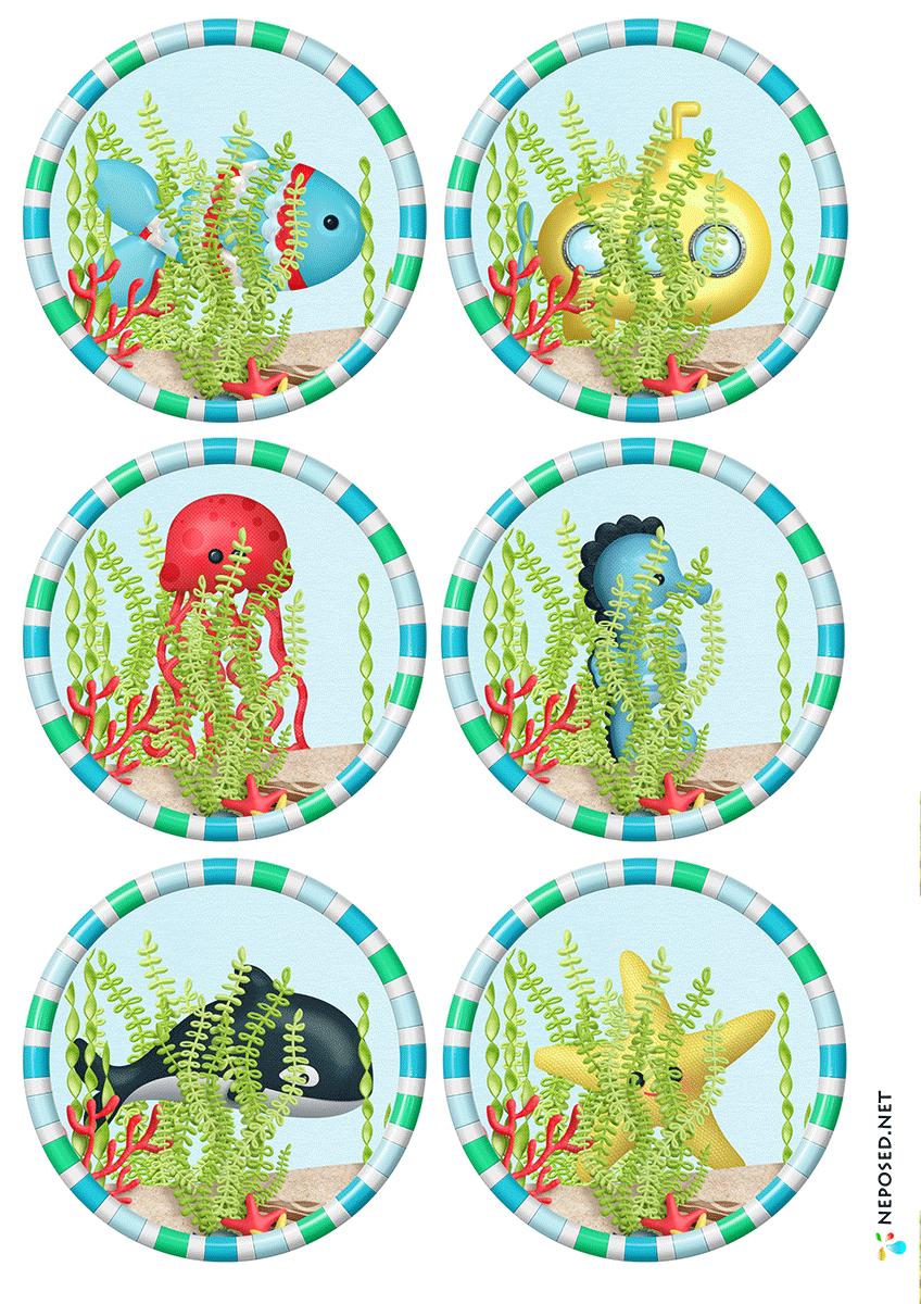 * Deze zeedieren kun je voor vele doeleinden gebruiken.... memorie, zoek iemand die, puzzelen.... 2-4