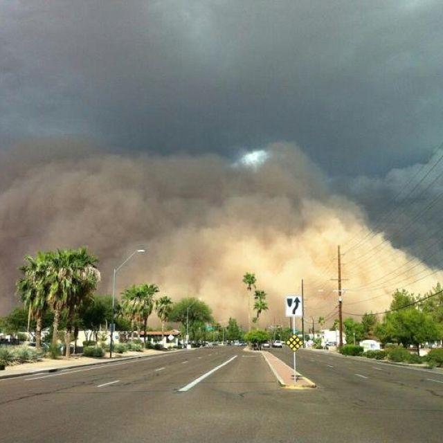 Arizona Ha Landscape