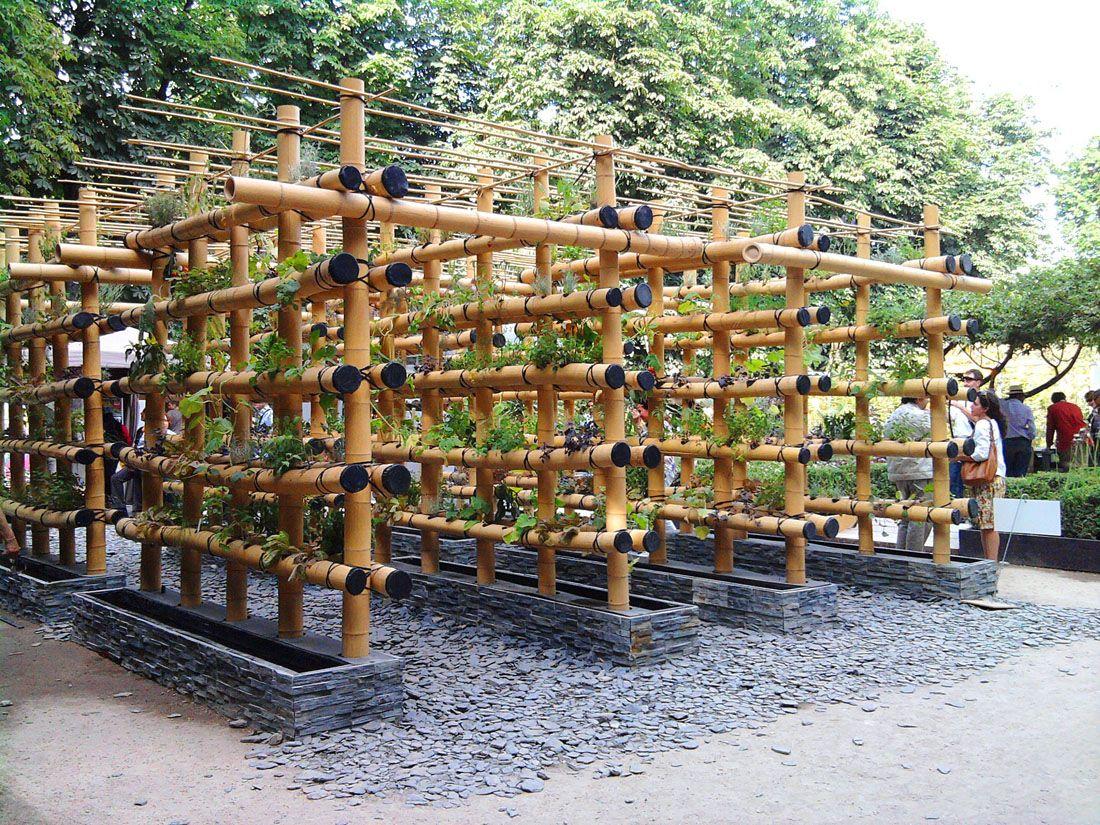 Jardins-bambous suspendus - Jardins de Babylone