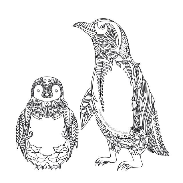 Don 39 t you think penguins are cute well we think so for Penguin adult coloring pages