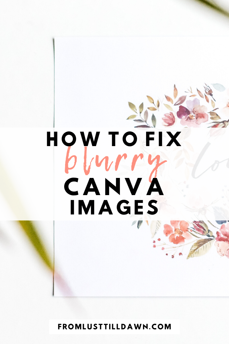 How To Fix Your Blurry Canva Images Fix You Fix It Blogging Groups