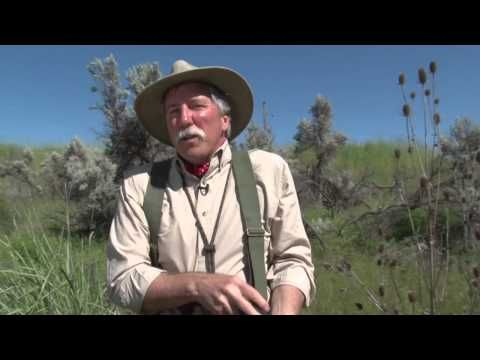 Seeing Eye To Eye - Dog Training - Bird Hunting Tip - http://www.7tv.net/seeing-eye-to-eye-dog-training-bird-hunting-tip/