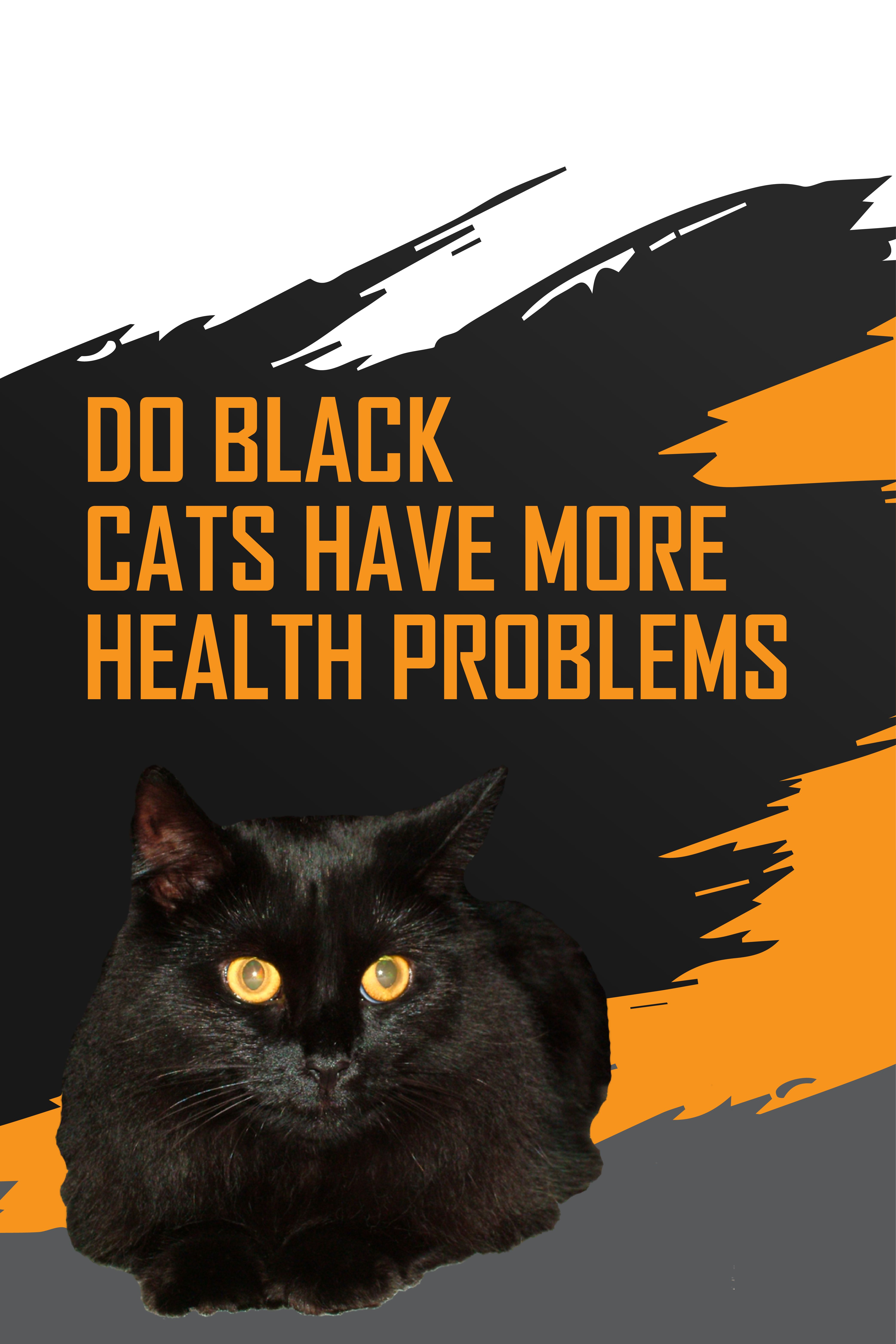 Quite The Contrary Black Cats Thanks To The Genes Responsible To Giving Them Their Black Fur Actually Gives These Cats