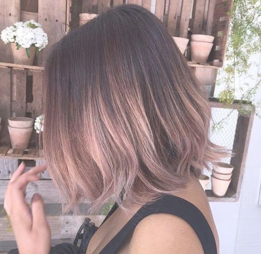 Image Result For Rose Gold Ombre Short Hair Rose Gold Hair Ombre Rose Gold Hair Gold Hair