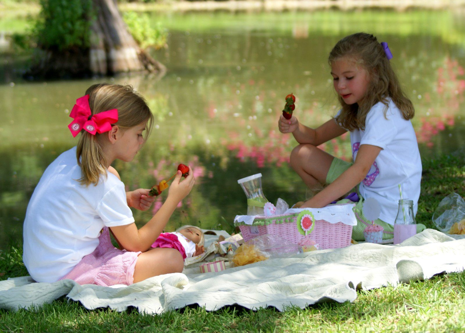 A Little Loveliness: Southern Daughter-Dolly Country Picnic