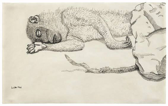 Lucien Freud   Dead Monkey (1944)