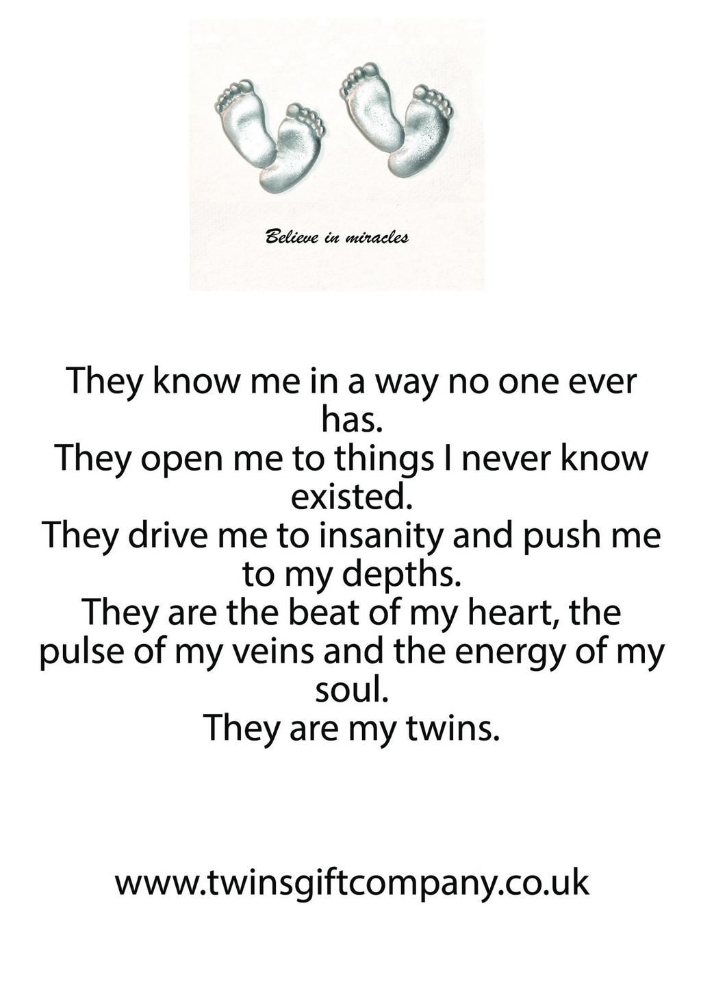 A Twin Poem Shared By Wwwtwinsgiftcompanycouk Twins Twin