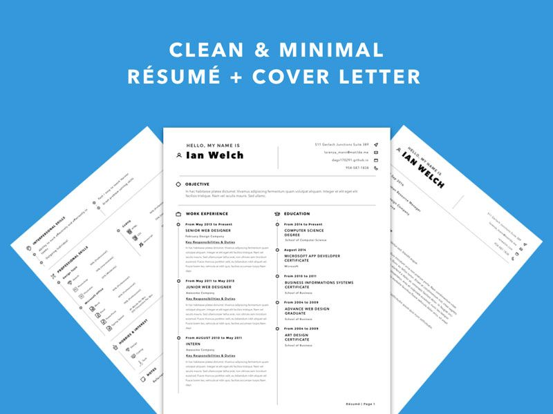 Clean Resume Template  Free Sketch App Resources