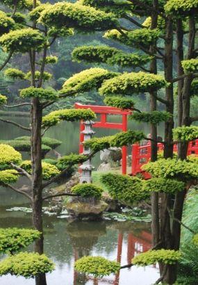 10 Jardins Japonais A Visiter En France Jardins Parc Et Jardin Et Jardin De Provence