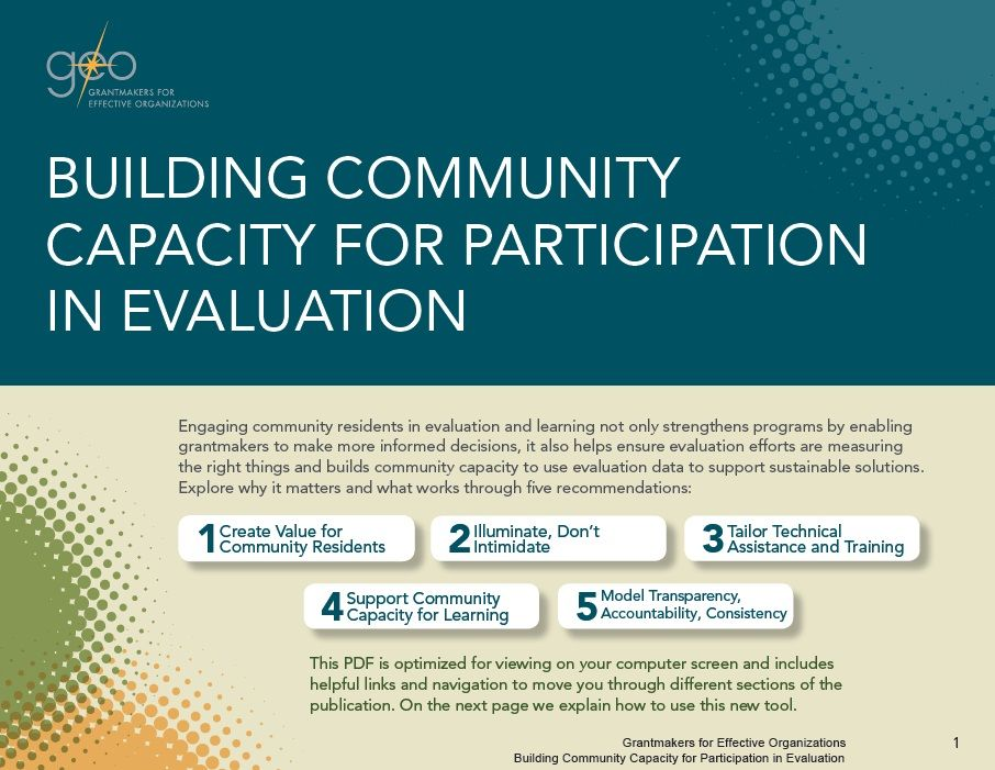 Building community capacity for participation in evaluation - technical evaluation