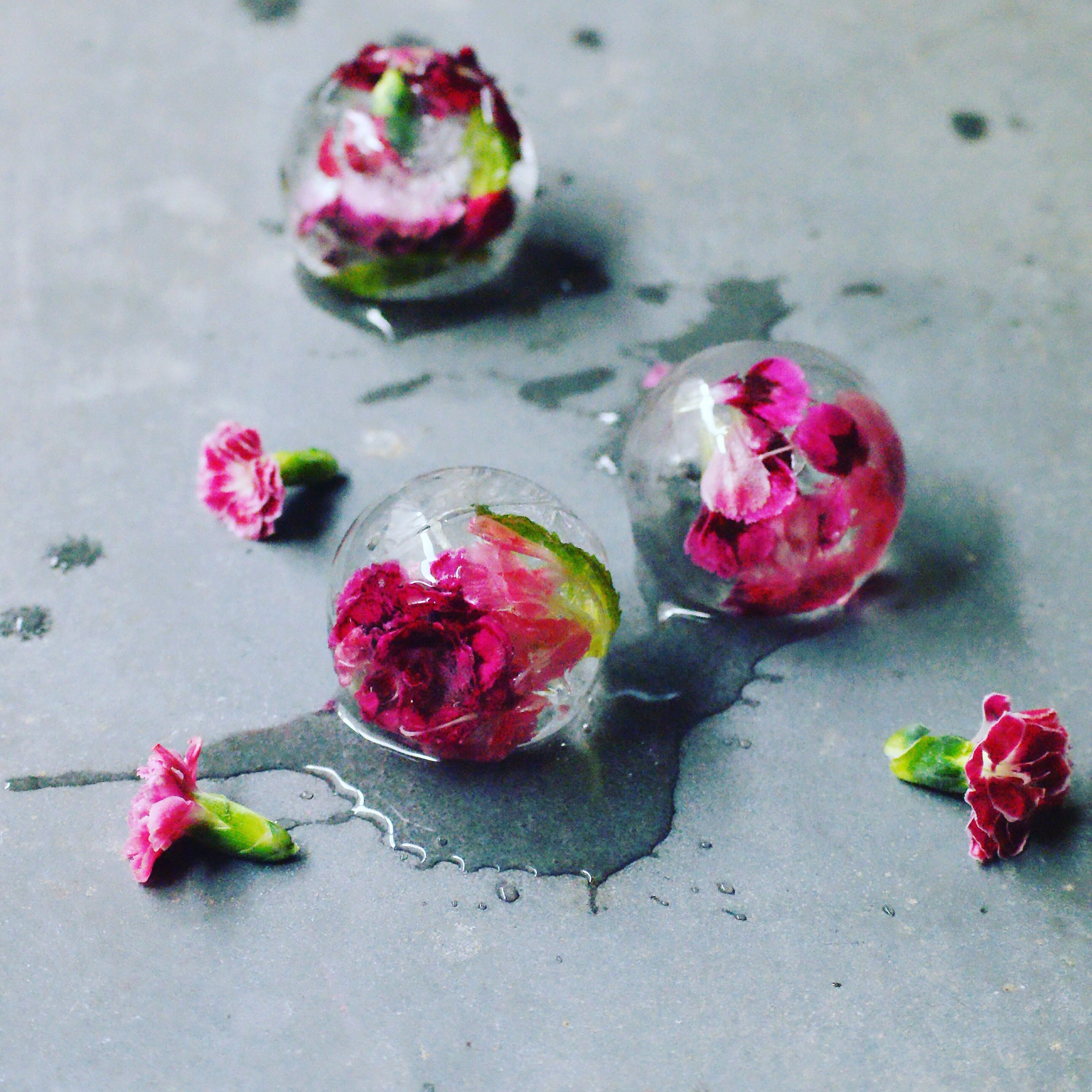 Floral ice balls easy to use ice ball maker from kmart with pretty easy to use ice ball maker from kmart with pretty blooms frozen inside stopboris Choice Image