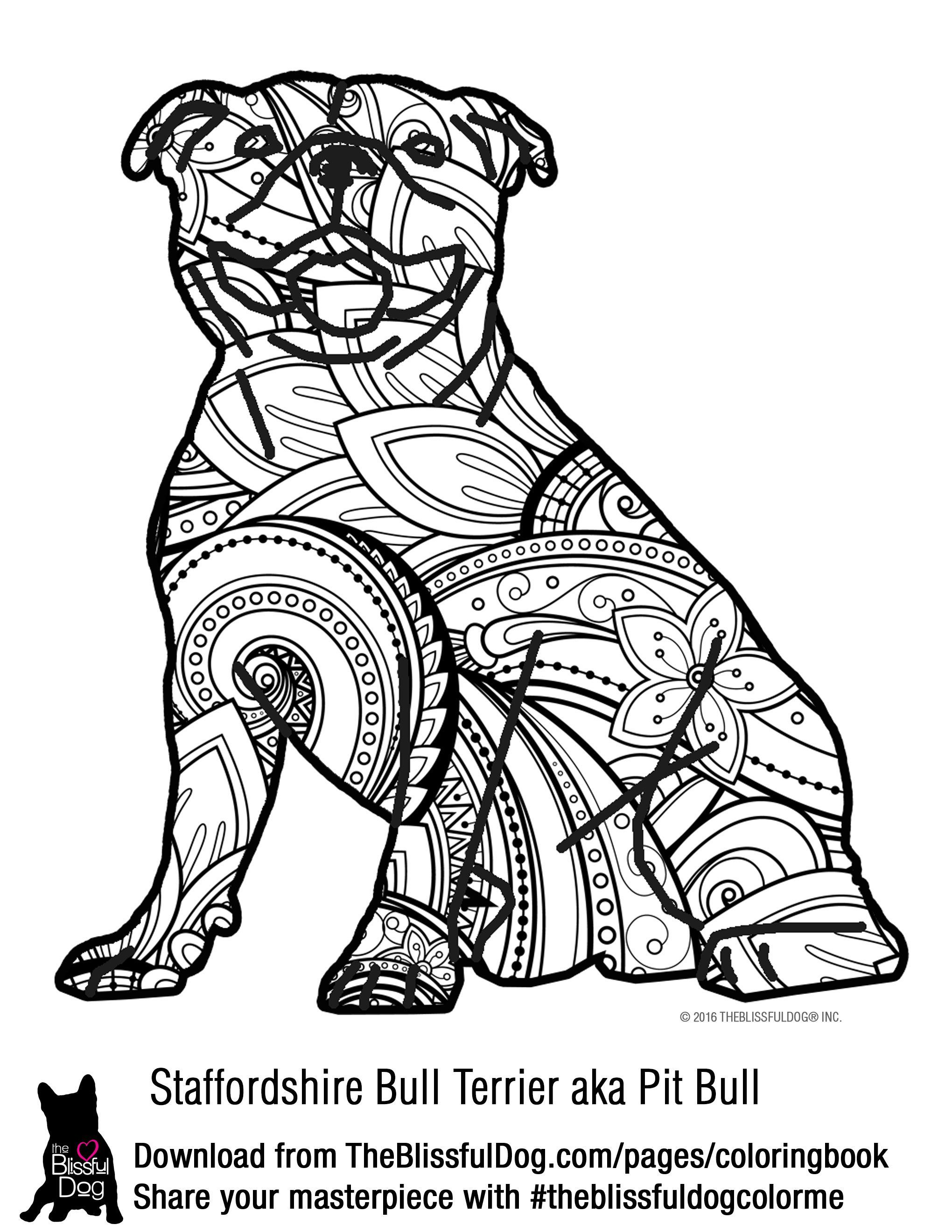 COLORING BOOK Staffordshire bull terriers Coloring books and