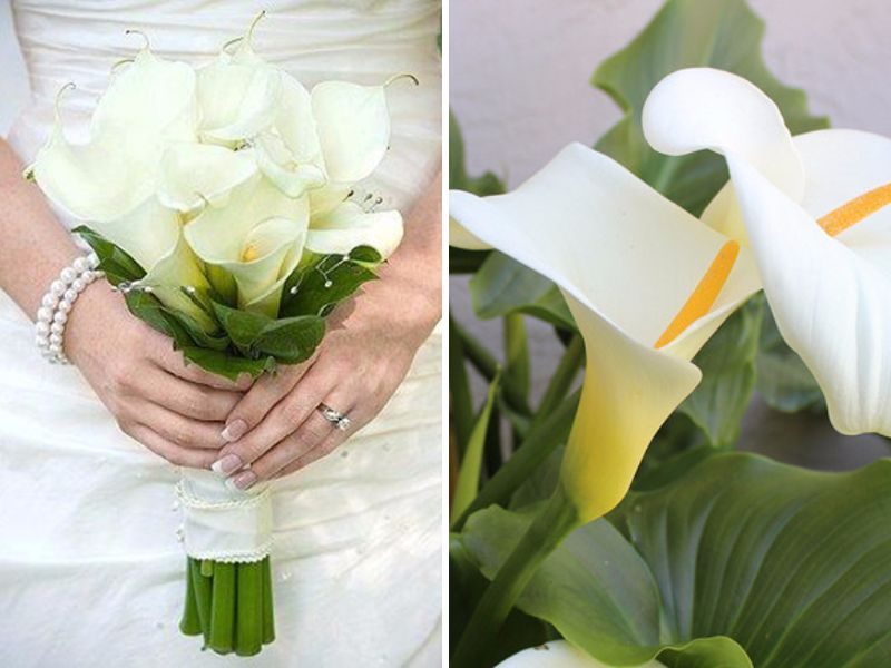 20 Best Flowers In Season In May For Your Wedding Wedding Bouquets