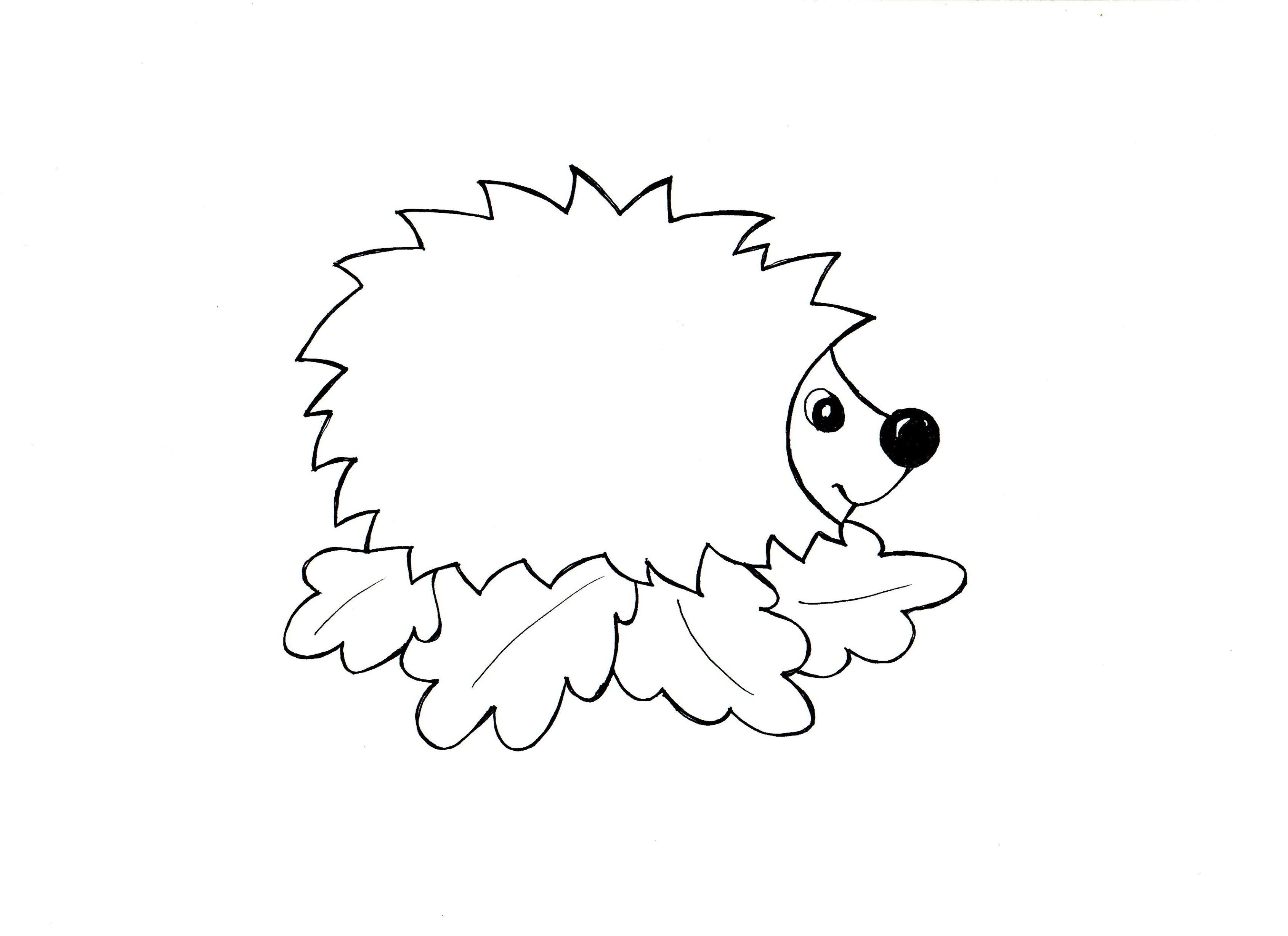 Sprachförderung mit Kindern - Der Igel  Igel vorlage, Igel