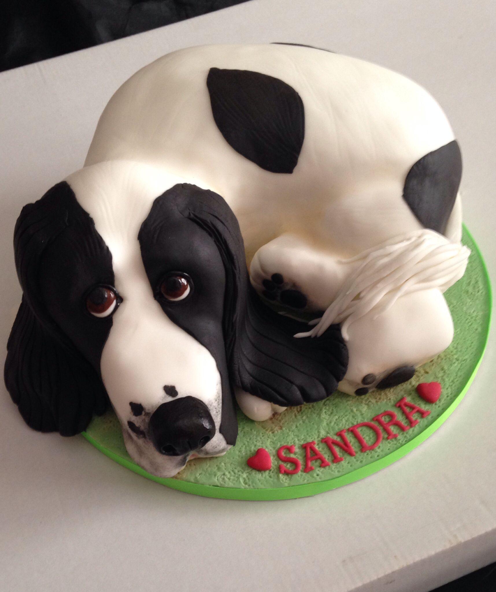Cocker Spaniel Cake Dog Cakes Animal Cakes Dog Cake