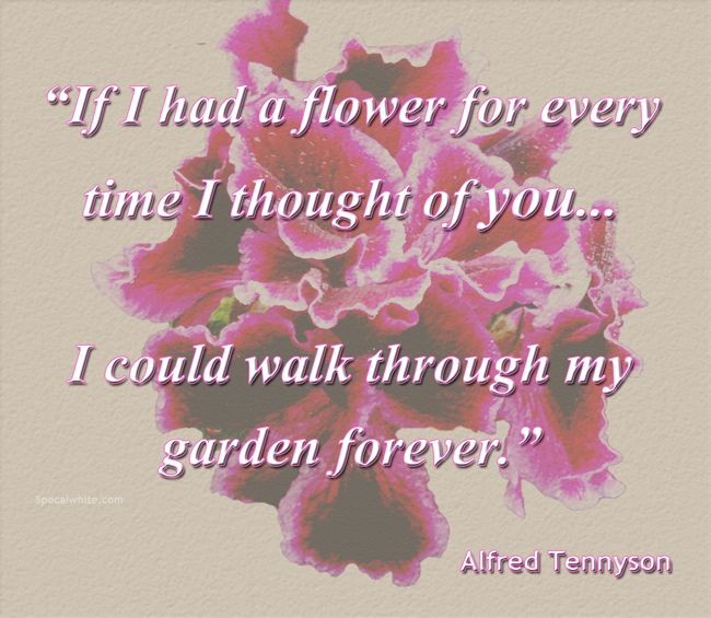 """""""If I had a flower for every time I thought of you…I could ..."""