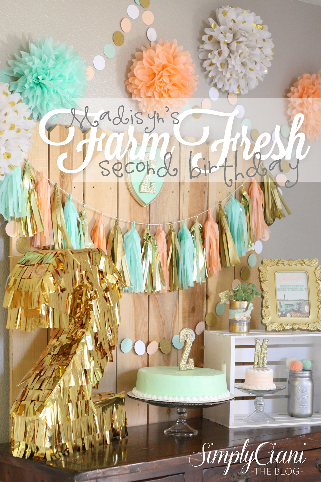 FARM FRESH 2ND BIRTHDAY Furniture Pinterest Budgeting