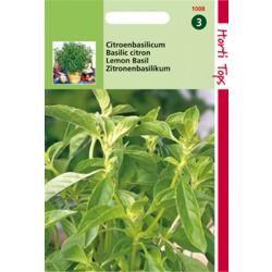 Hortitops Basilicum Citroensmaak - Lemon Basil - Kemangi