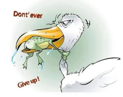 Image result for cartoon images for dont give up