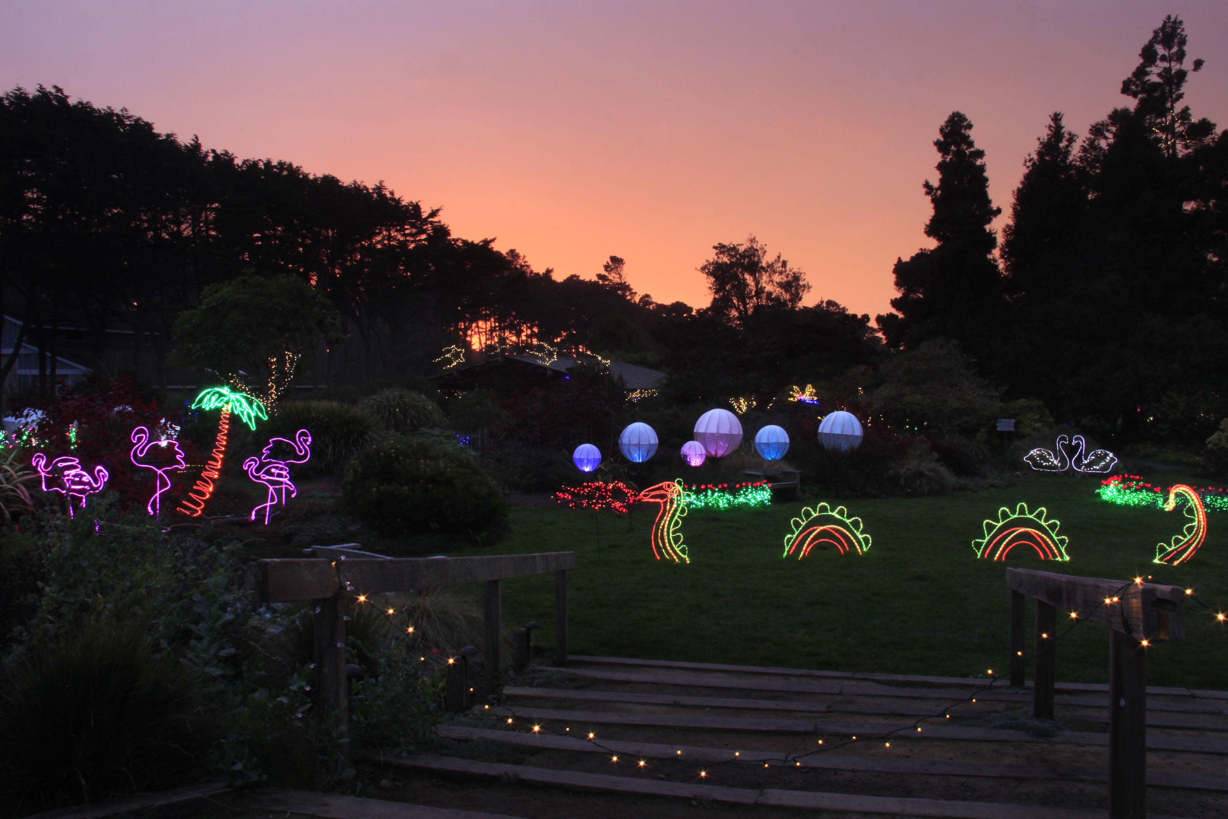 66b0dae2e5e2d629d5a1c4279548efe7 - Festival Of Lights Mendocino Coast Botanical Gardens