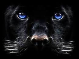 You will not buy a panther for a pet, but they are not evil in any way. Beauty is in the eyes of the beholder. Black is a beautiful color, and black adds mystery and I love mystery. The Incensewoman