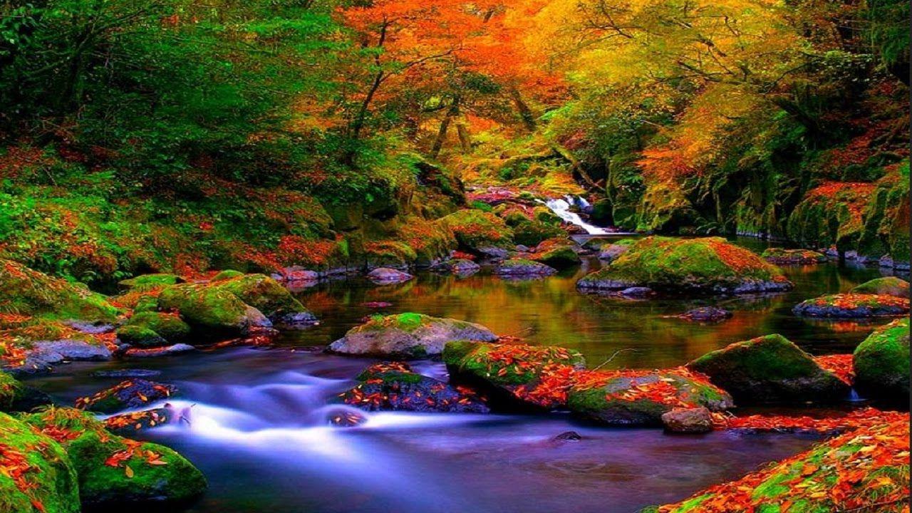 10 Most Visited Places Top 10 Most Beautiful Places Countries Cities City Tourist Autumn Landscape Landscape Wallpaper Autumn Forest
