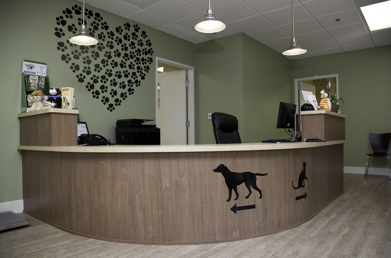 Paw Heart Art Wall Decals For Home Decor Pets Dog Puppy Doggy Puppies Hopper991810 Art Decals Decor In 2020 Vet Office Decor Pet Clinic Pet Resort