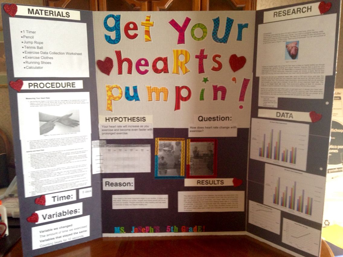 5th Grade Class Science Fair Project Checking Your Heart Rate